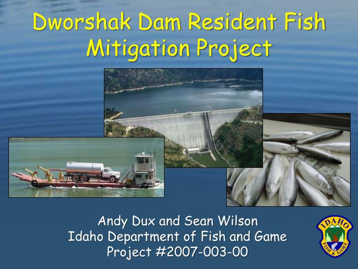 dworshak dam resident fish mitigation project n.