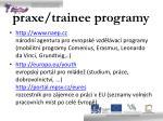 praxe trainee programy2