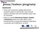 praxe trainee programy3