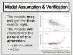 model assumption verification