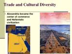 trade and cultural diversity