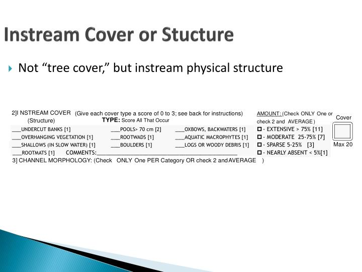 instream cover or stucture n.
