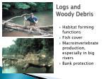 logs and woody debris
