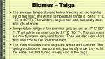biomes taiga1