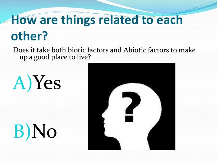 How are things related to each other?