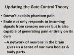 updating the gate control theory