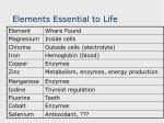 elements essential to life1