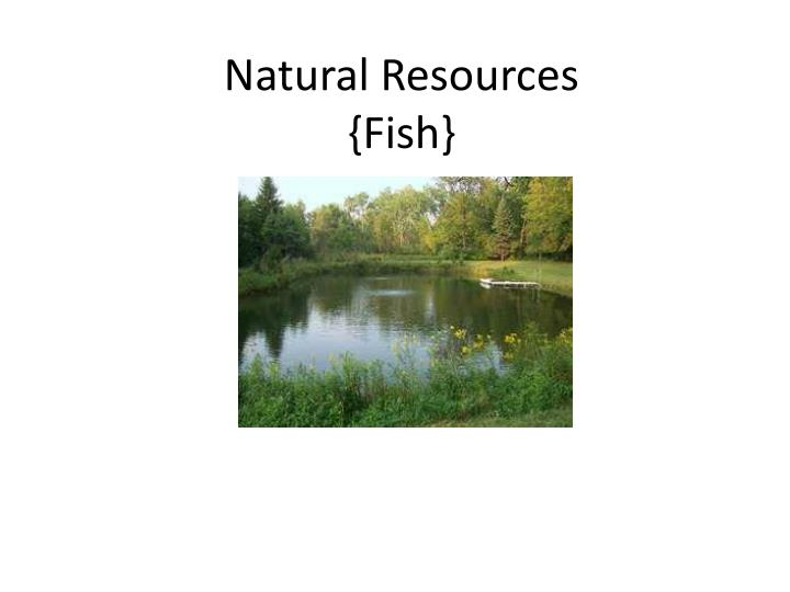 natural resources fish n.