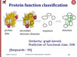 protein function classification