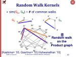 random walk kernels1