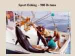 sport fishing 900 lb tuna