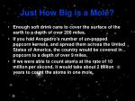 just how big is a mole