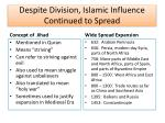 despite division islamic influence continued to spread