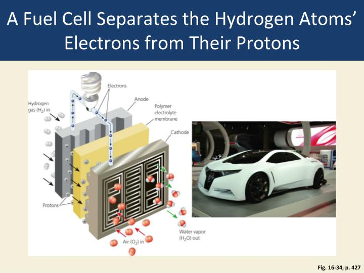A Fuel Cell Separates the Hydrogen Atoms' Electrons from Their Protons