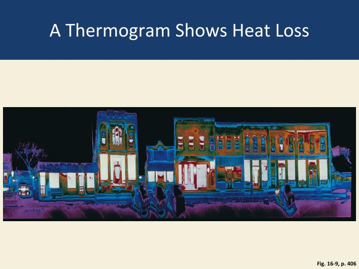 A Thermogram Shows Heat Loss