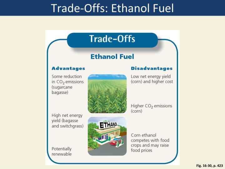 Trade-Offs: Ethanol Fuel