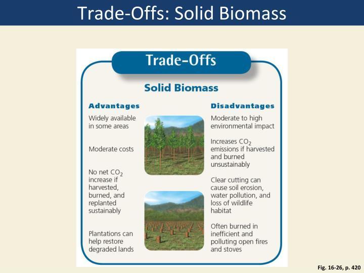 Trade-Offs: Solid Biomass