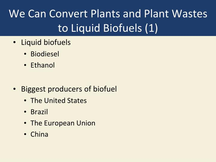 We Can Convert Plants and Plant Wastes to Liquid Biofuels (1)
