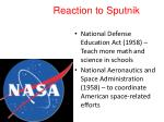 reaction to sputnik
