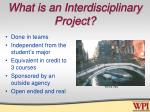 what is an interdisciplinary project