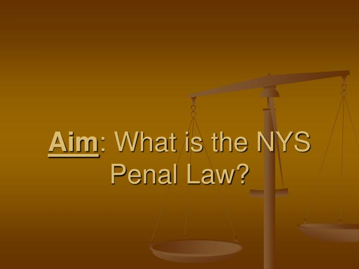 aim what is the nys penal law n.