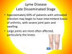 lyme disease late disseminated stage
