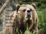 how living things meet their needs