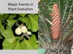 major events in plant evolution4
