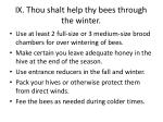 ix thou shalt help thy bees through the winter
