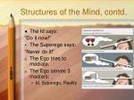 structures of the mind contd