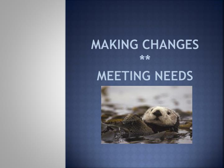making changes meeting needs