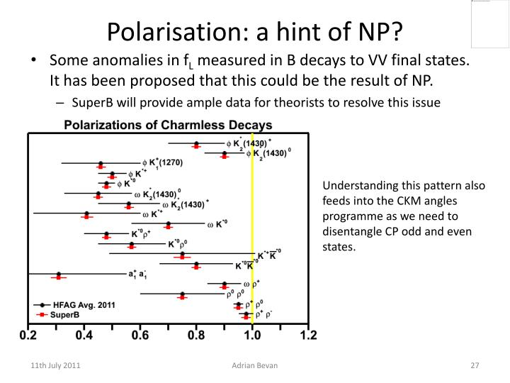 Polarisation: a hint of NP?