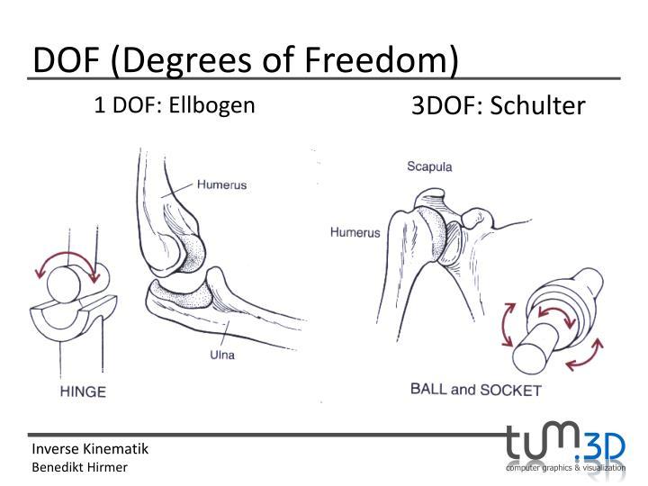 DOF (Degrees of Freedom)