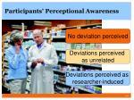 participants perceptional awareness