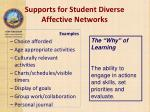 supports for student diverse affective networks