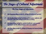 the stages of cultural adjustment