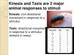 kinesis and taxis are 2 major animal responses to stimuli