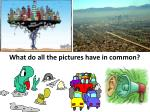 what do all the pictures have in common