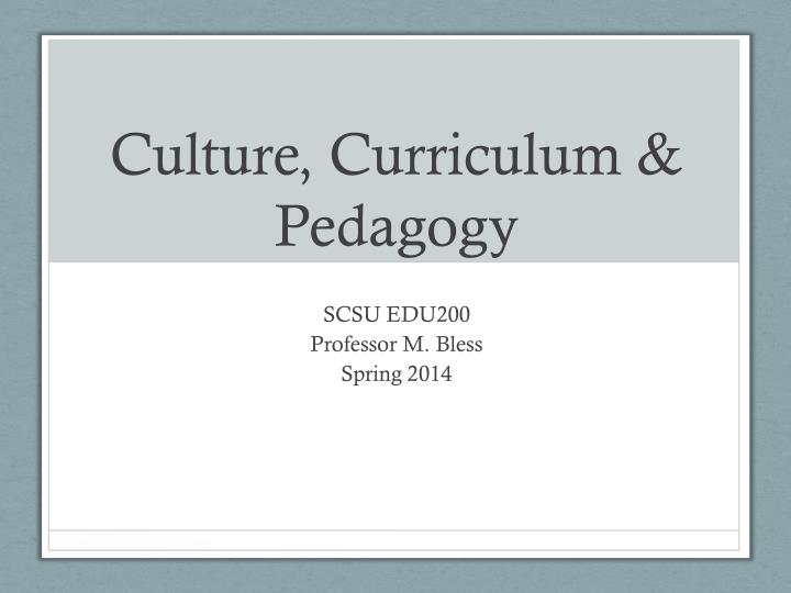 culture curriculum pedagogy n.