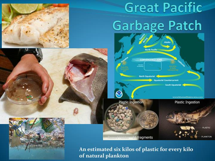great pacific garbage patch n.