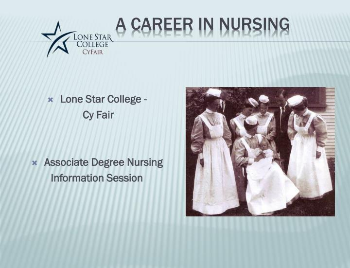 a career in nursing n.