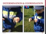 determination coordination