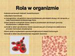 rola w organizmie5