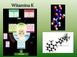 witamina k1