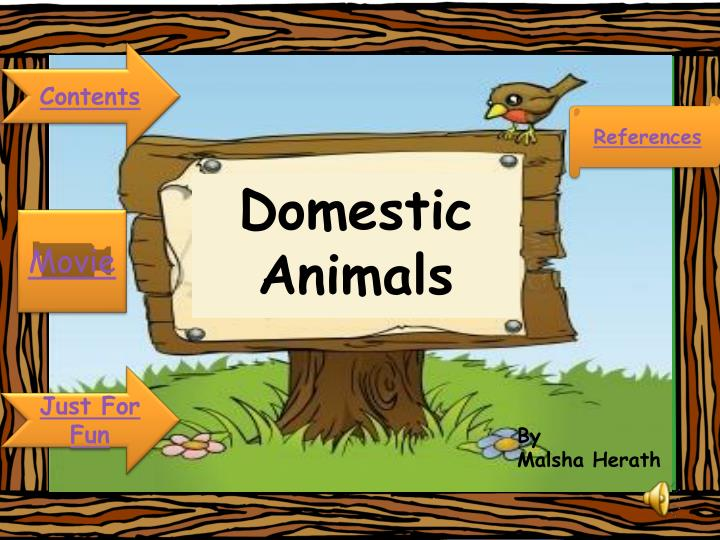 domestic animals n.