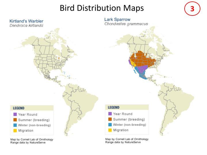 Bird distribution maps2