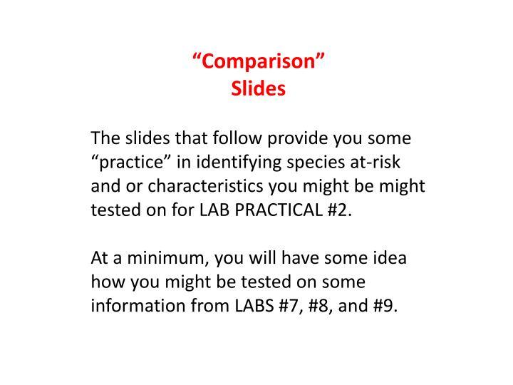 """""""Comparison"""""""