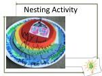 nesting activity