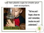 use two plastic cups to create your own ecosystem