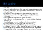 the supine2